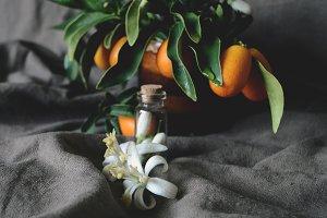 Still life with orange