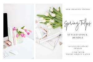 Spring Bundle with Tulips