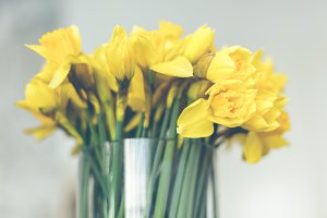 Yellow narcissuses bouquet