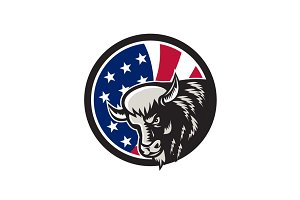 American Buffalo USA Flag Icon