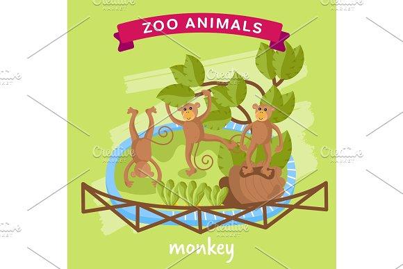 Vector Zoo Animal Monkey