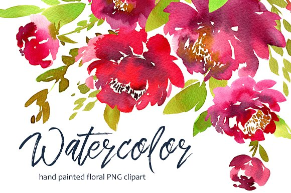Bright Watercolor Purple Peonies PNG