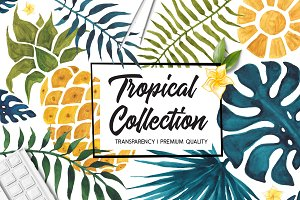 Tropical Collection, watercolor set