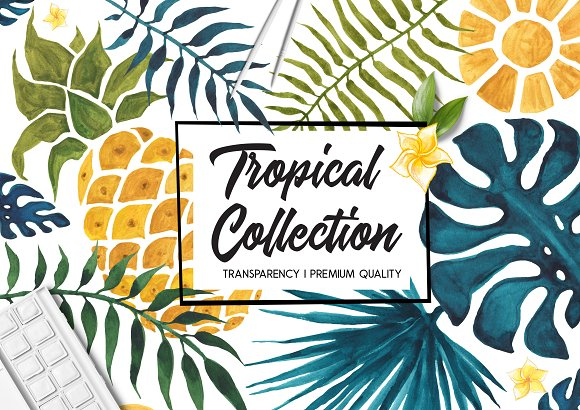 Tropical Collection Watercolor Set