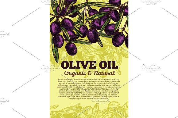 Vector Olive Oil Black Olives Sketch Poster