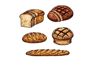 Vector sketch bread color icons of bakery shop