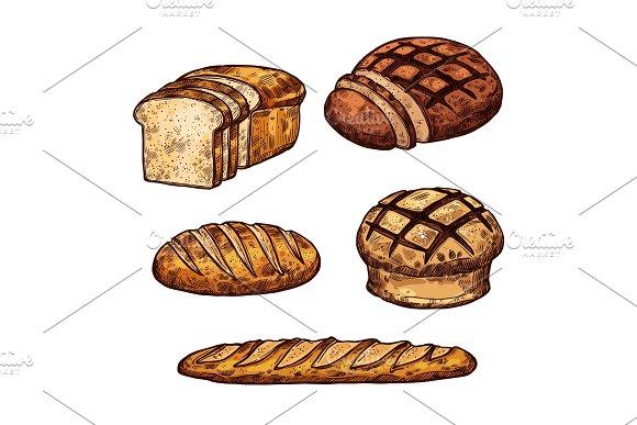 Vector Sketch Bread Color Icons Of Bakery Shop