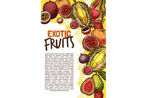 Vector fruit shop sketch poster of exotic fruits