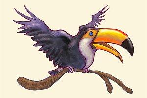 Toucan bird isolated (PSD)