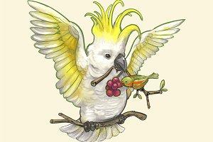 Cockatoo bird isolated (PSD)