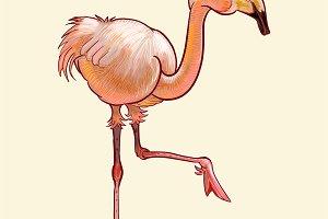 Hand drawn flamingo isolated (PSD)