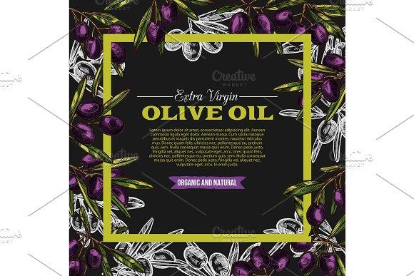 Vector Olive Oil Extra Vrigin Sketch Poster