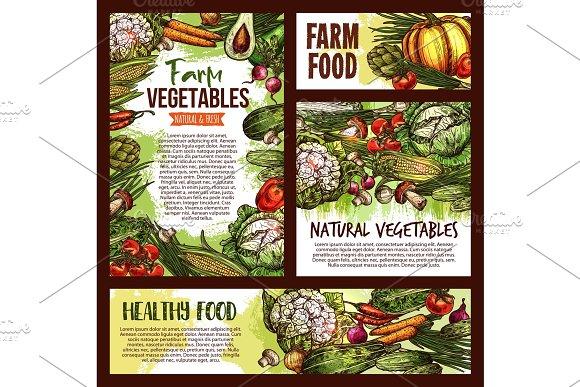 Vector Natural Vegetables Food Sketch Posters