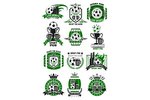 Vector soccer sports bar football pub icons