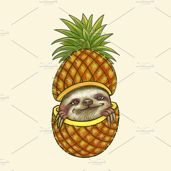 Hand Drawn Pineapple Isolated