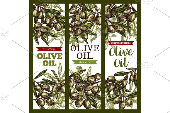 Vector Olive Oil Extra Vrigin Sketch Banners