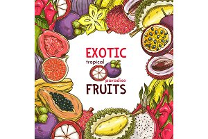Vector sketch poster of fruit shop exotic fruits