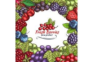 Vector natural berries sketch poster