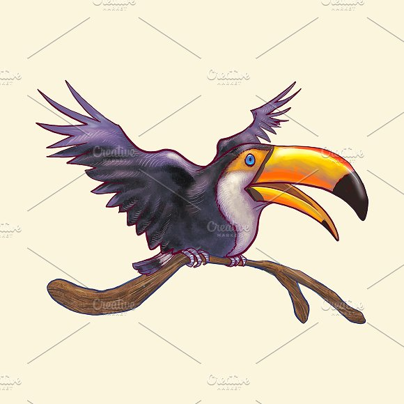 Hand Dranw Toucan Bird Isolated