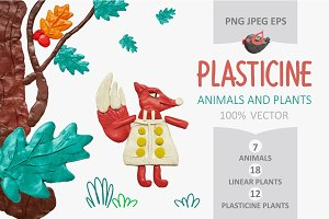 Animals and plants. PLASTICINE.