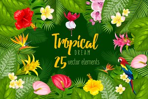 Tropical plants vector pack