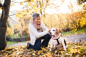 An elderly woman with dog on a walk in autumn nature.