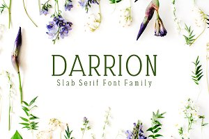 Darrion Slab Serif 5 Font Family