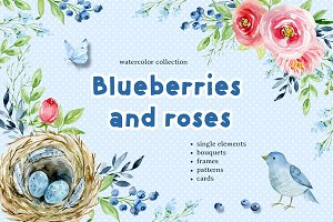 Blueberries and roses