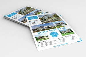 Real Estate Flyer V794