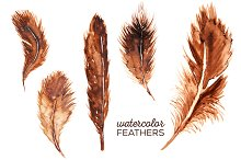 5 Watercolor Feather Clip Art