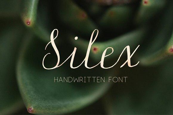 Silex Modern Calligraphy