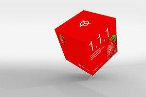 1.1.1 Simple 3D Box Mockup