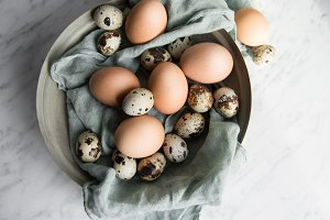 Easter chicken and quail eggs