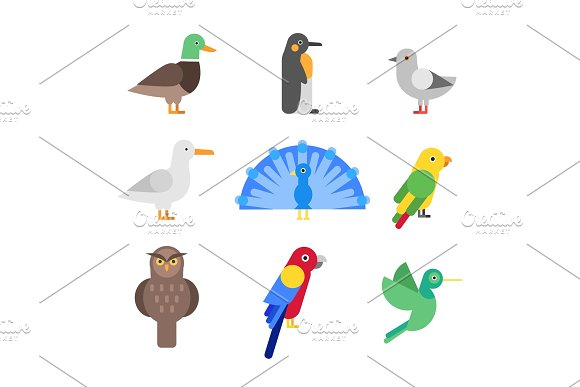 Stylized Illustrations Of Different Birds