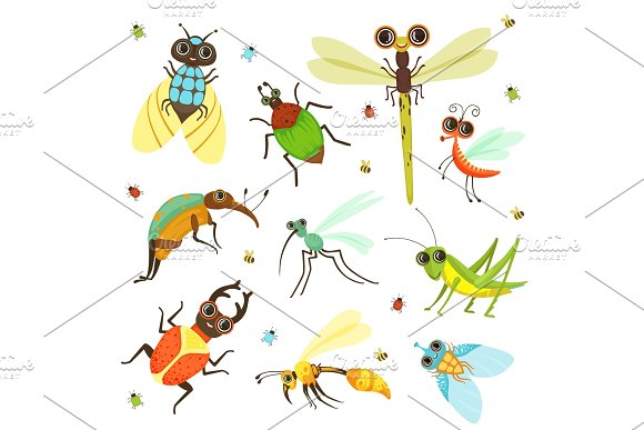 Bugs Butterfly And Other Insects In Cartoon Style