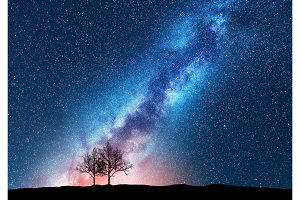 Trees against starry sky with Milky Way. Space