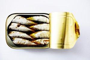 Sardine Tin