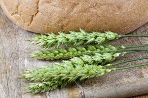 green wheat and rye