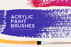 200 Acrylic Paint Brushes