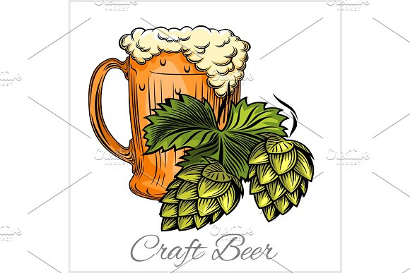 Beer Mug And Hops On A White Background
