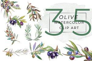 OLIVE Watercolor Clip Art