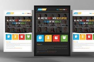 Ecommerce Website Evaluation Flyer