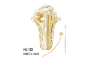 Enoki mushrooms long, thin white golden needle futu or lily mushroom vector
