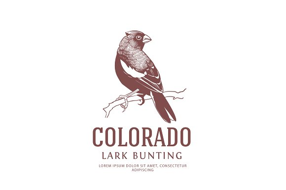Colorado State Bird Logo