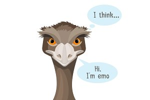 Emu isolated on white background with speech bubbles