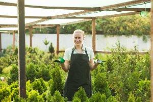 The gardener presents green plants