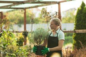 Woman gardener with pots