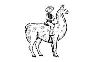 Child ride on llama engraving vector