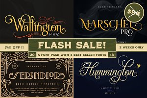 Flash Sale! Zeune Ink Font Pack