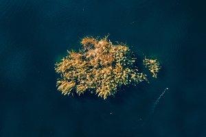 Autumn aerial drone nature landscape